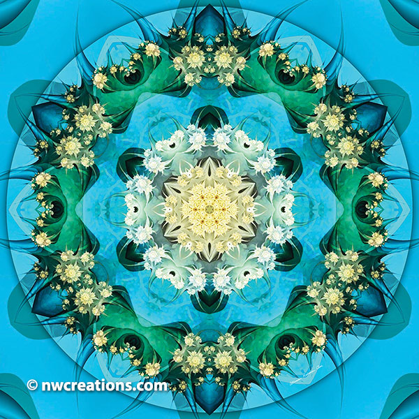 Mandalas of Forgiveness and Release 15