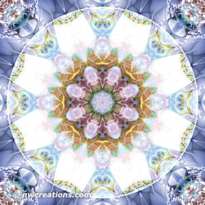 Mandalas from the Heart of Freedom 14