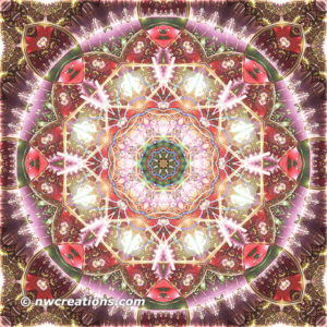 Mandalas from the Heart of Freedom 26
