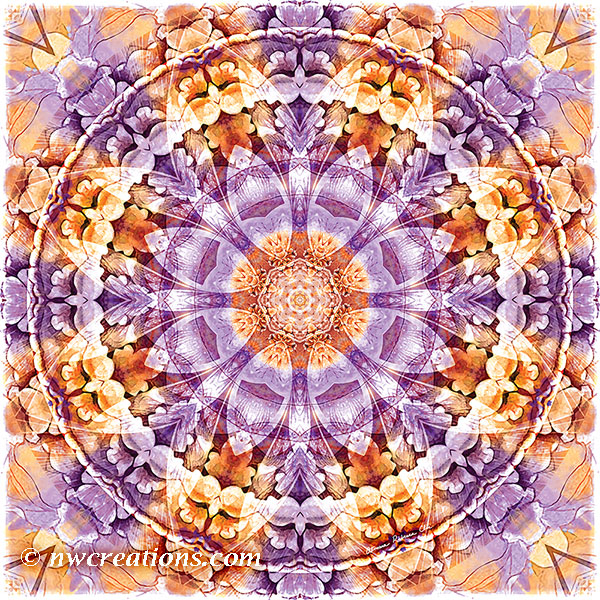 Mandalas from the Heart of Change 19