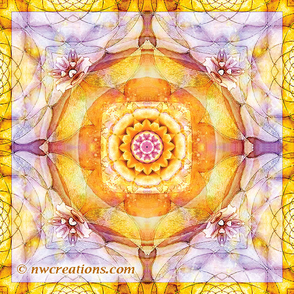 Mandalas from the Heart of Change 20
