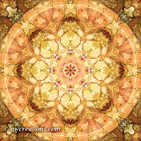 Mandalas from the Heart of Change 21