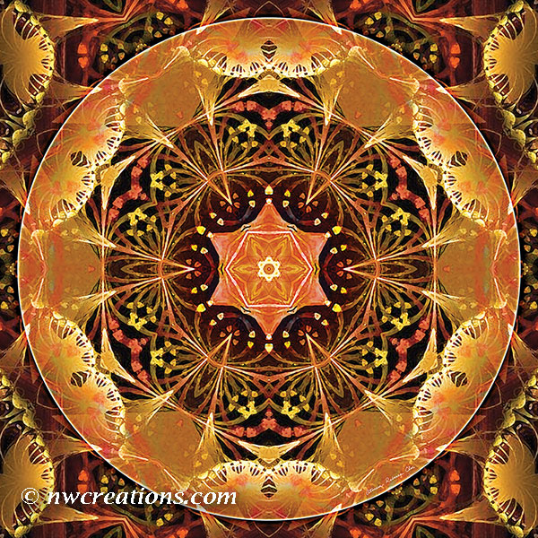 Mandalas from the Heart of Change 22