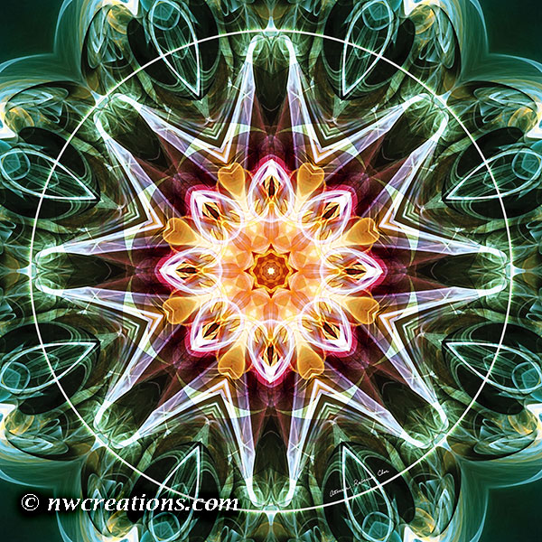 Mandalas from the Heart of Change 5